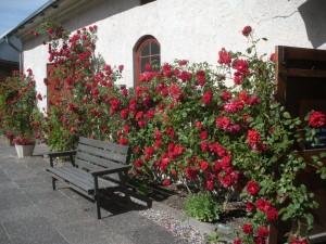 Gotland 6, Lummelunda