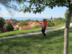 Gotland visning 033